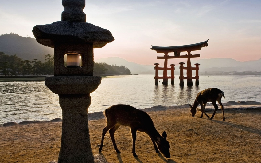 Japón a tu Aire con Rail Pass - Ruta Patrimonio de la UNESCO