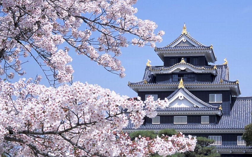 Japón a tu Aire con Rail Pass - Enigmáticas Islas del Sur