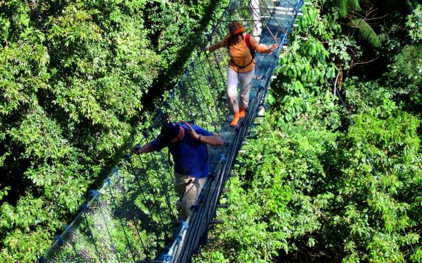 Peru Antropológico + Aventuras Selva Amazónica Puerto Maldonado