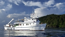 Crucero Sea Hunter -  Expedición Buceo Isla del Coco