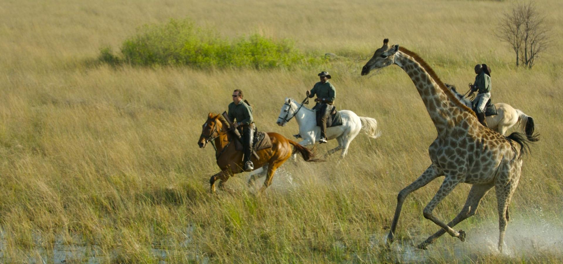 Safaris con YOMUNDEO