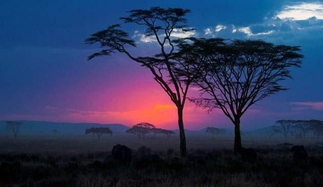 Tanzania - Safari Clasic Deluxe en 4x4