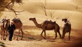 Marruecos - Aventura Desierto