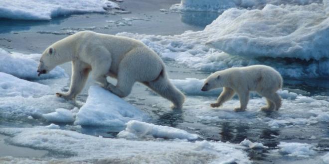 Islas Svalbard (NOR)