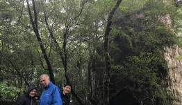 Familia PINEDO RODRIGUEZ - Japón