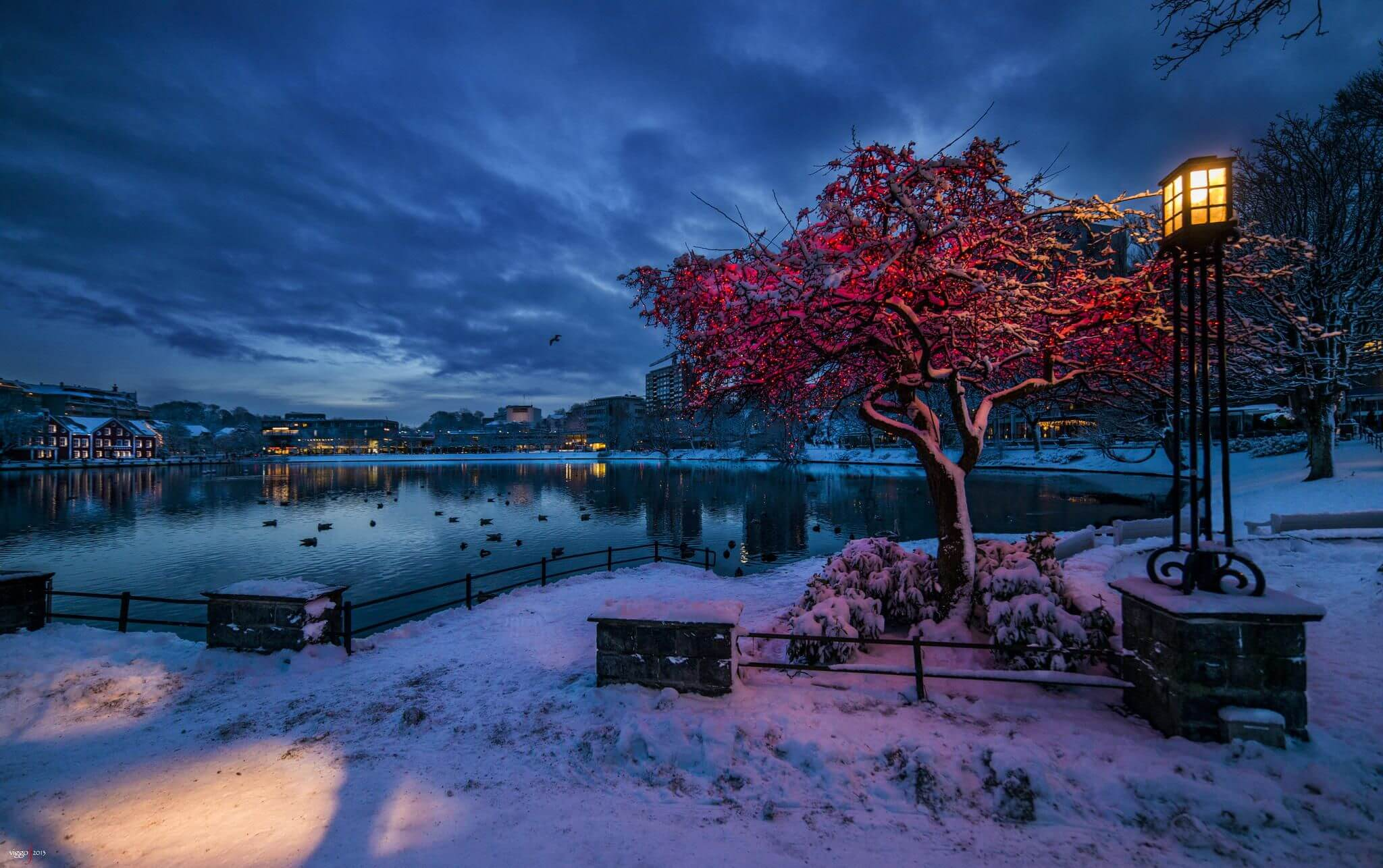 Lago Breiavatnet