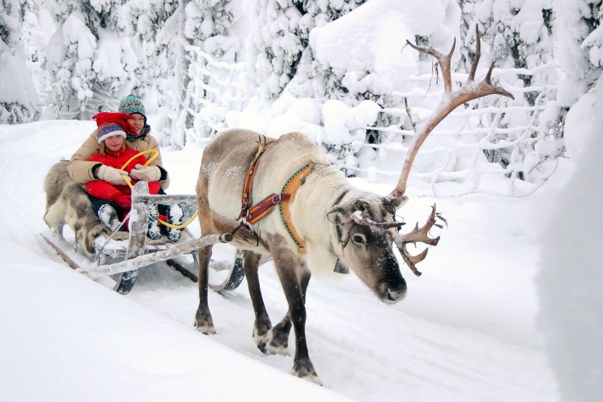 Paseo en los Renos de Papá Noel