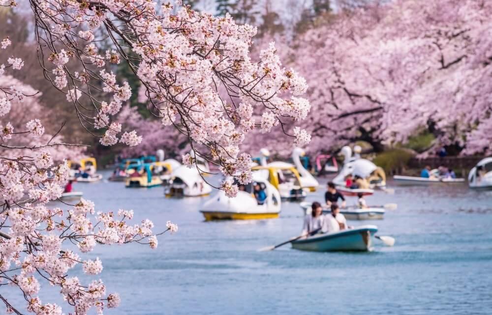 Parque Inokashira - Mitaka