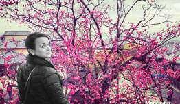 Cintia DOMINGUEZ TRIANO - Japón