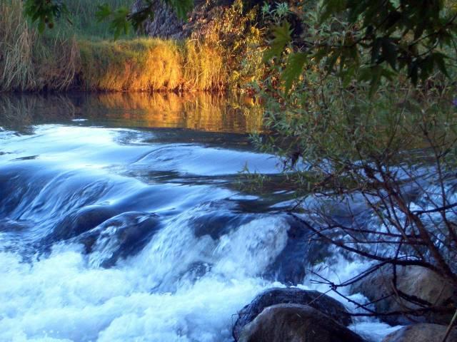 Orilla Río Jordán