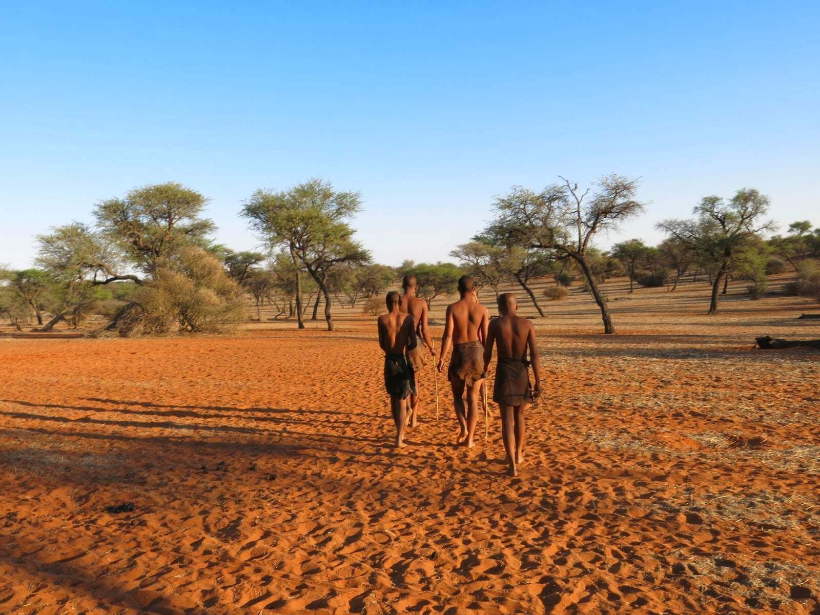 Acampada salvaje Kalahari Central