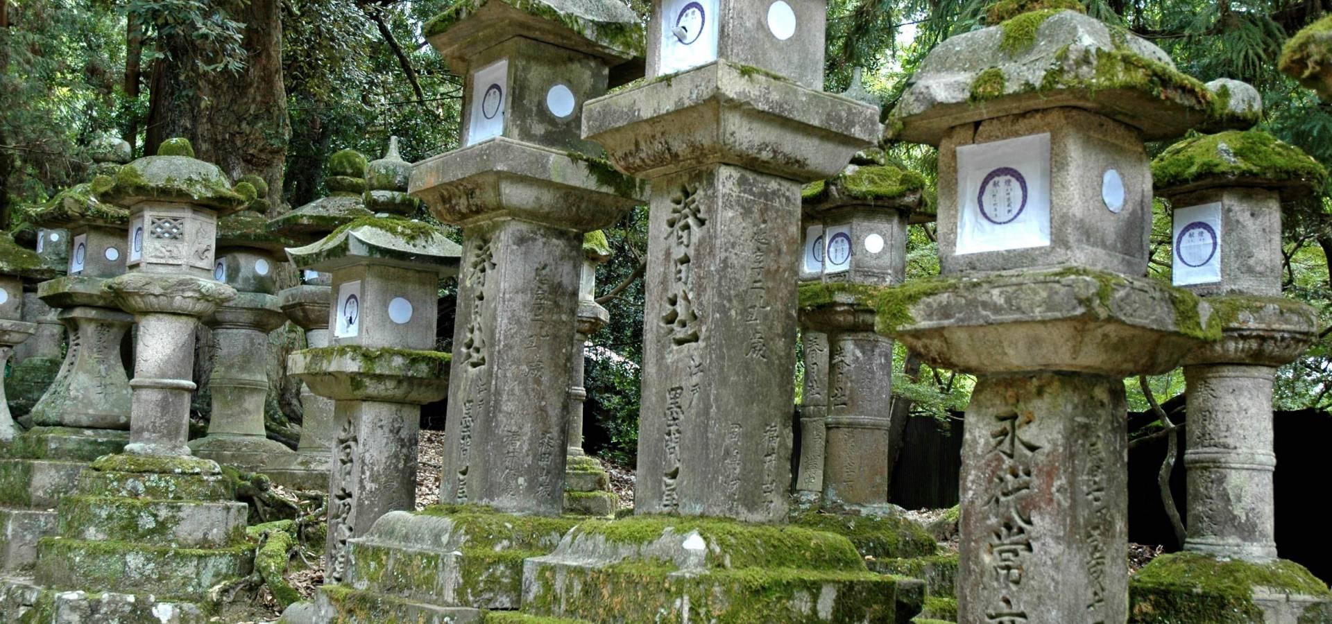 Japón - Grand Tour + Etapa Camino de Kumano