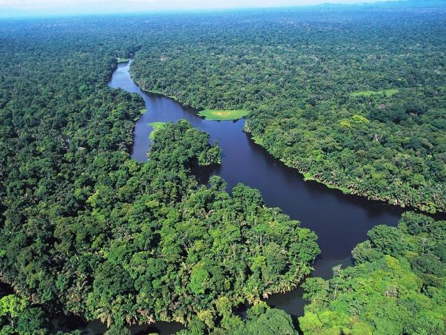 Parque Nacional Tortuguero - Vista aerea