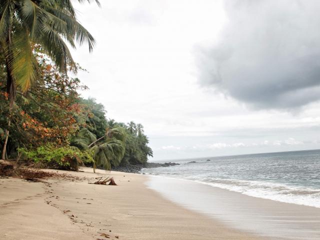 Playa banana