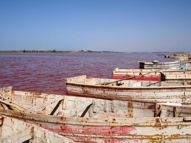 barcas en lago rosa