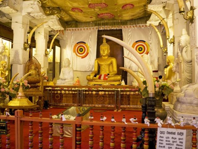 templo tooth figura interior