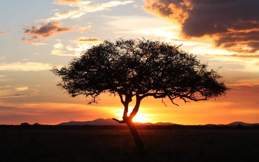 Expedición en Camión Safari - Sueño de Africa + Zanzibar