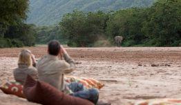 Safari-Vintage: Jambo en 4x4 y Avioneta + Lago Manyara